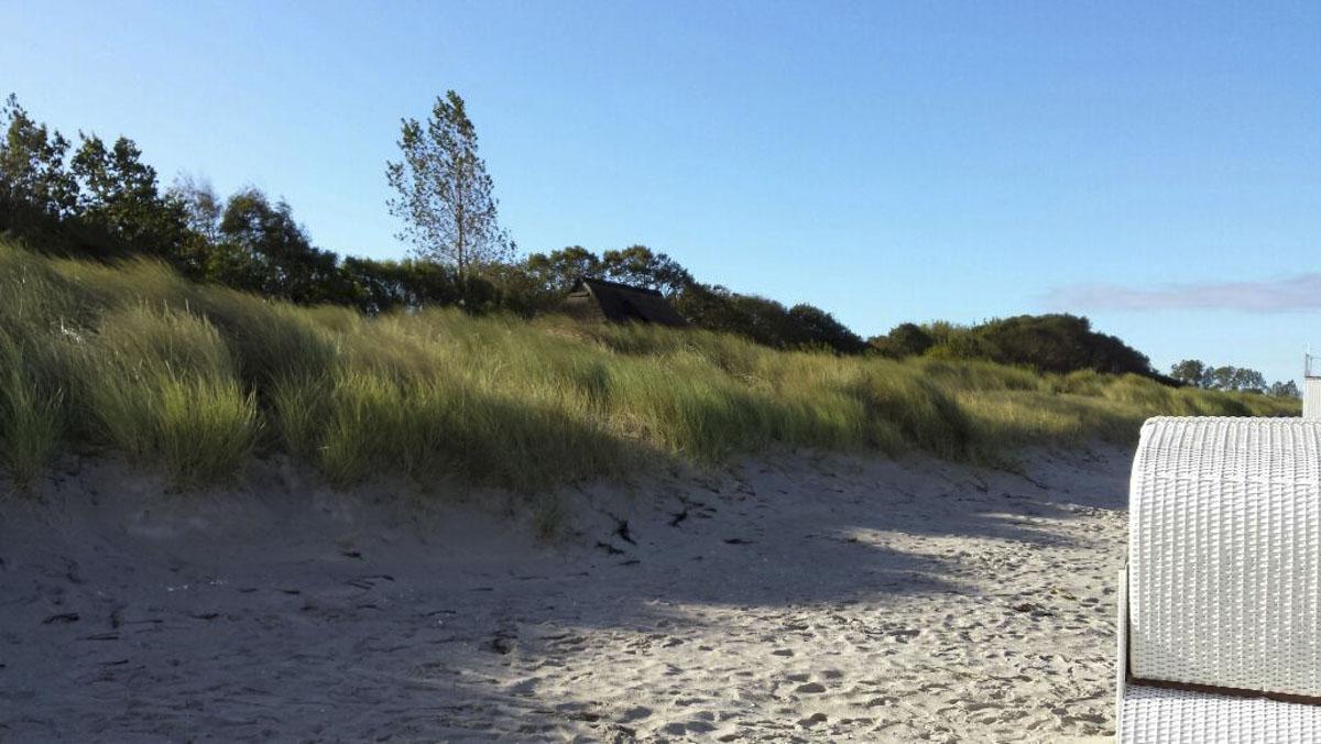 Strand mit Baeumen