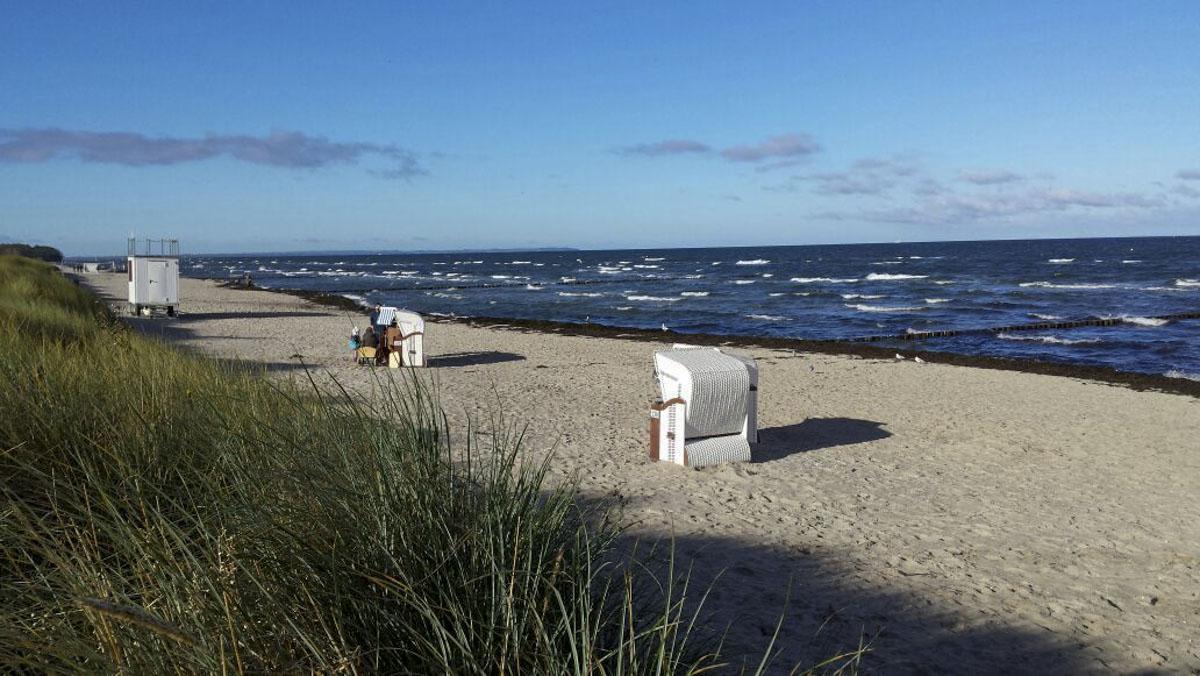 Strandkoerbe an der Ostsee und Vegetation